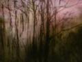 Akvarell, 17x23 cm, 2010